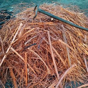 海南废旧贵金属回收